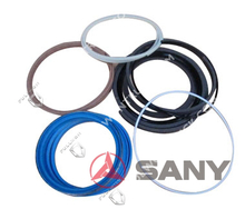 SANY Cheap Seal Kit -S200